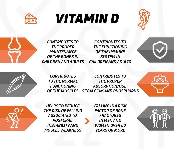 Quelles sont les propriétés de la vitamine D?